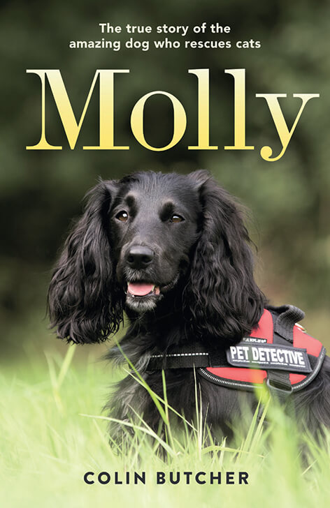 Molly the Pet Detective by Colin Butcher - USA version