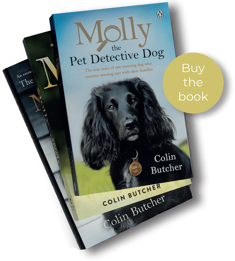 Molly and Me by Colin Butcher - The Pet Detective